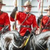 The fabulous RCMP Musical Ride